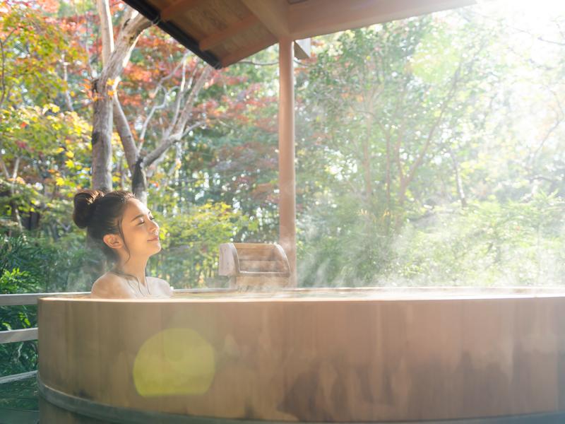 人工温泉装置の写真